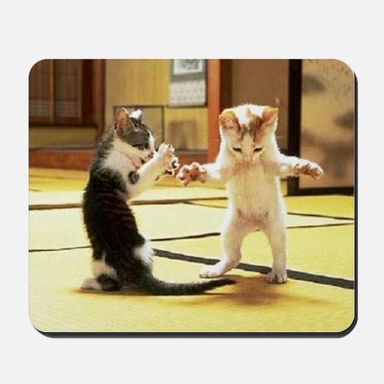 Kung Fu Kittens Mousepad
