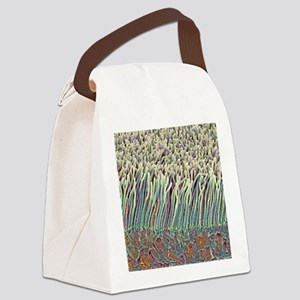 Retina rod cells, SEM Canvas Lunch Bag