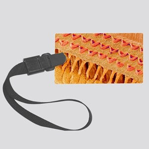 Sensory hair cells in ear, SEM Large Luggage Tag