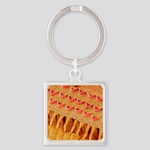 Sensory hair cells in ear, SEM Square Keychain