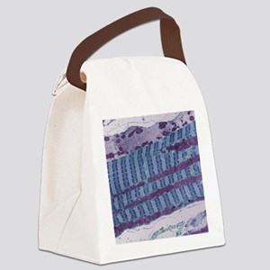 Skeletal muscle fibre, TEM Canvas Lunch Bag