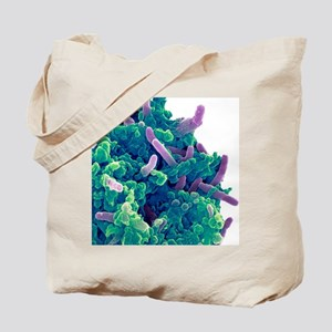 Bacteria infecting a macrophage, SEM Tote Bag