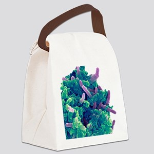 Bacteria infecting a macrophage,  Canvas Lunch Bag