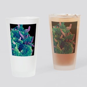 Bacteria infecting a macrophage, SE Drinking Glass