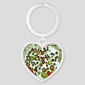 Chlamydia trachomatis bacteria, TEM Heart Keychain