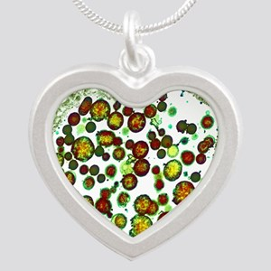 Chlamydia trachomatis bacter Silver Heart Necklace