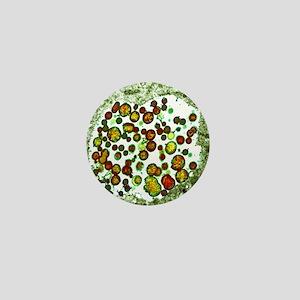 Chlamydia trachomatis bacteria, TEM Mini Button