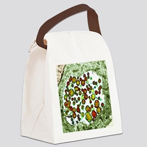 Chlamydia trachomatis bacteria, T Canvas Lunch Bag
