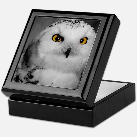 Snowy Owl Oscar Keepsake Box