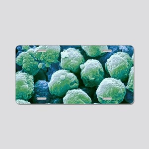 Neutrophil white blood cell Aluminum License Plate