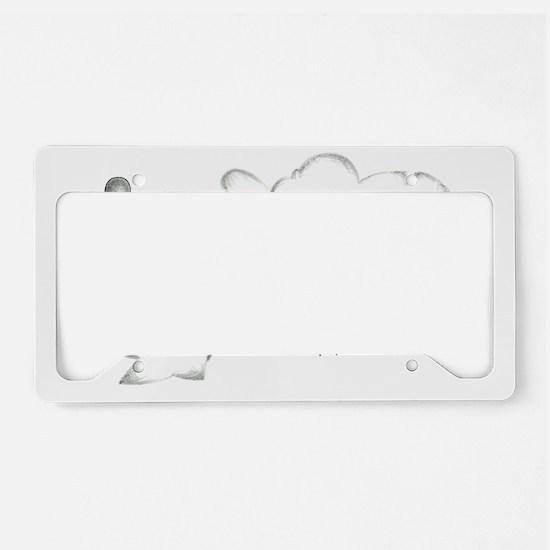 Expression License Plate Holder