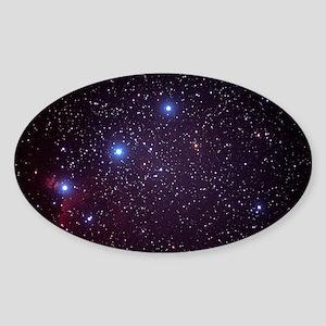 Orion's Belt Sticker (Oval)