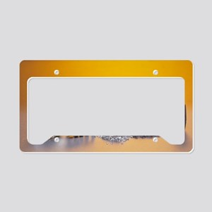 Group 2 metals License Plate Holder