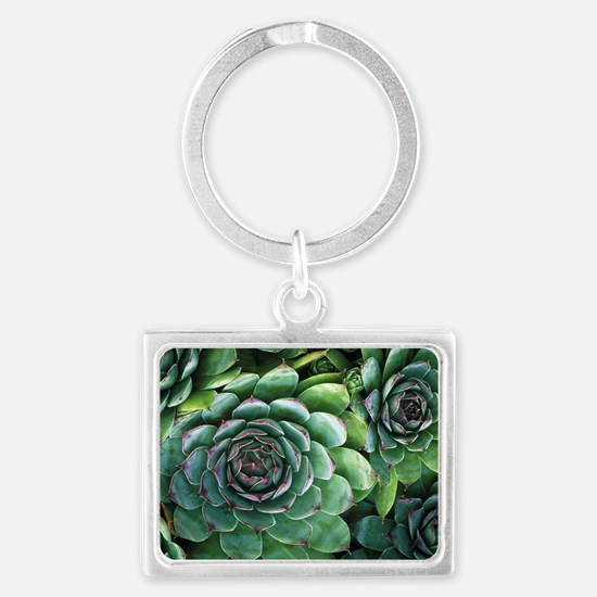 'Hens and chicks' succulents Landscape Keychain