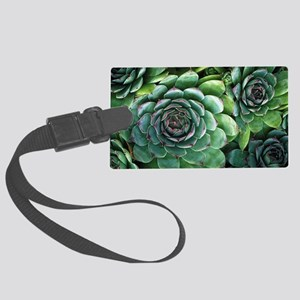 'Hens and chicks' succulents Large Luggage Tag