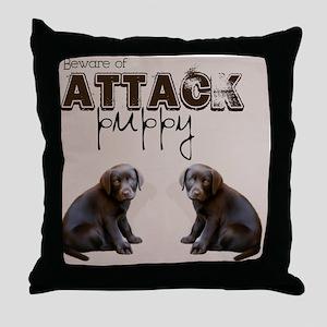 lb2_60_curtains_834_H_F Throw Pillow