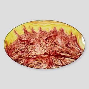 Skin layers, light micrograph Sticker (Oval)