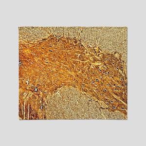 Spinal cord, light micrograph Throw Blanket