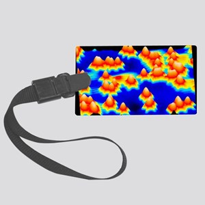 Spintronics research, STM Large Luggage Tag