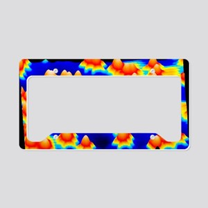 Spintronics research, STM License Plate Holder