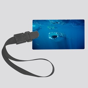 Studying whale shark Large Luggage Tag