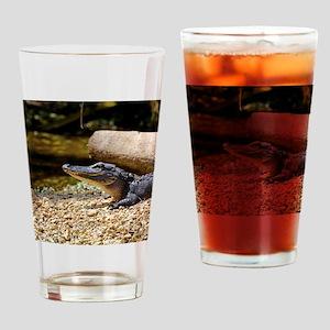 Baby Alligator Drinking Glass