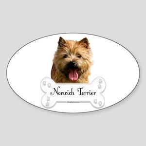 Norwich 1 Oval Sticker