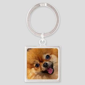 Happy Pomeranian Square Keychain