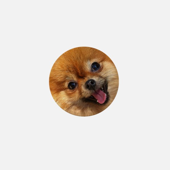 Happy Pomeranian Mini Button