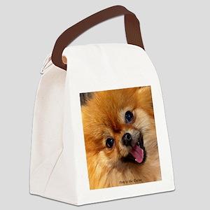 Happy Pomeranian Canvas Lunch Bag
