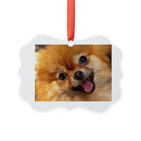 Happy Pomeranian Picture Ornament