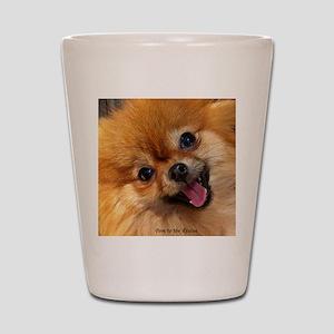 Happy Pomeranian Shot Glass