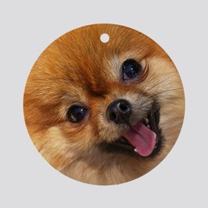 Happy Pomeranian Round Ornament