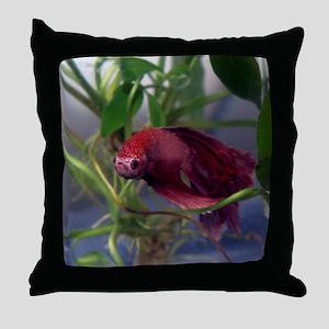 red betta male Throw Pillow