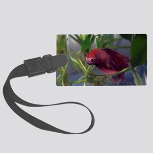 red betta male Large Luggage Tag