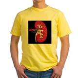 Anatomy and physiology Mens Classic Yellow T-Shirts