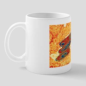 Macrophage cell engulfing bacteria, TEM Mug