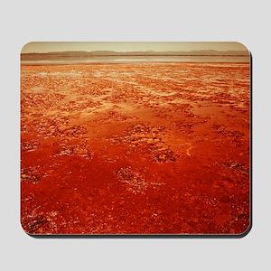 Mud on Mars Mousepad