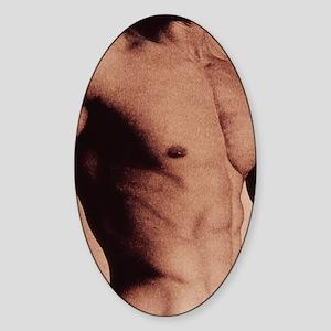 Man's torso Sticker (Oval)