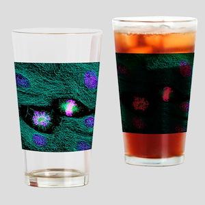 Mitosis Drinking Glass