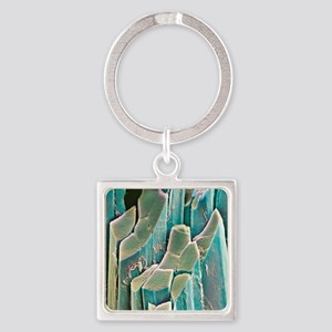 Muscle fibres, SEM Square Keychain