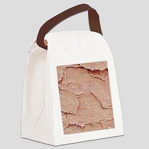 Nail keratin layers, SEM Canvas Lunch Bag