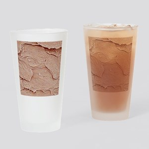 Nail keratin layers, SEM Drinking Glass
