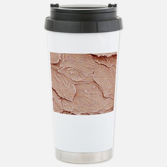 Nail keratin layers, SE Stainless Steel Travel Mug
