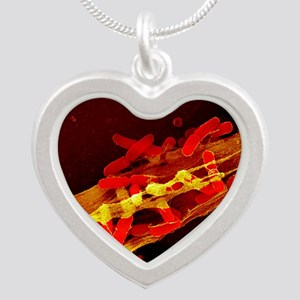 Neutrophil cell trapping bac Silver Heart Necklace