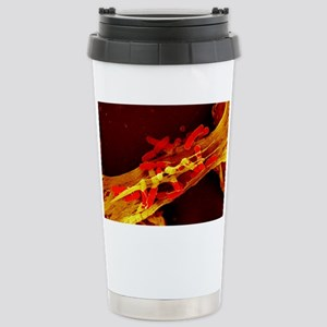 Neutrophil cell trappin Stainless Steel Travel Mug