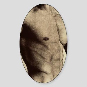 Nude man's torso Sticker (Oval)