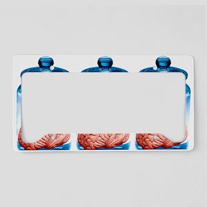 Preserved brains, artwork License Plate Holder