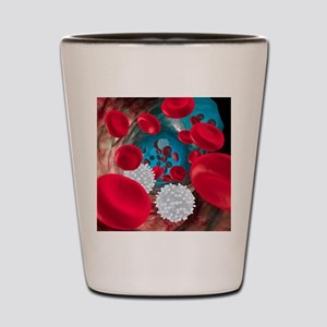 Red and white blood cells Shot Glass