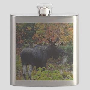 11x11_pillow 8 Flask